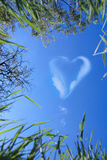 Clouds in the form of heart Stock Image