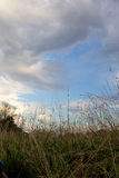 Clouds gathering in sky over grassy landscape Stock Images