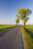 Clouds and grass. Road in poland in europe in spring Royalty Free Stock Photo