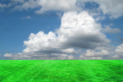 Clouds and Grass Background. Has large puffy clouds above a manicured grass lawn background which extends to the horizon Stock Image
