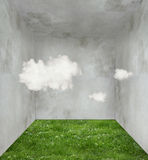 Clouds and grass in a room Royalty Free Stock Photos