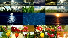 Clouds and grass timelampse sky split-screen. HD 1080i stock footage