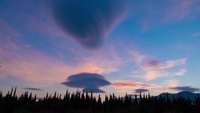 Clouds and green cypresses at sunset, time lapse, 4k. Clouds and beautiful green coniferous trees at sunset, time lapse, 4k stock video