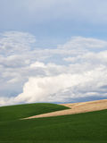 Clouds and green fields Stock Images