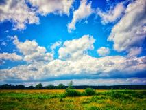 Summer sky over green grass. Clouds and green grass royalty free stock photo