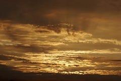 clouds guld- Fotografering för Bildbyråer