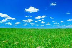 Clouds and meadow. Relief picturesque clouds and meadow are in blue sky Stock Image