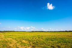 Clouds on the meadow royalty free stock photos