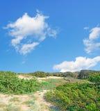Clouds and mediterranean scrub Stock Photos