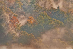Clouds, Mist and Fog. Morning fog and mist among clouds and trees in the Fall Stock Photography