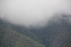 Clouds of the mountaintop. Royalty Free Stock Image