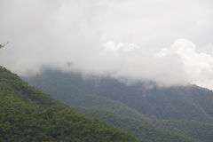 Clouds of the mountaintop. Stock Images