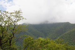 Clouds of the mountaintop. Royalty Free Stock Photos