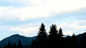 Clouds move above mountains with fir trees. On background of light blue sky stock video