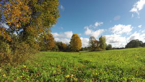Clouds moving over autumnal fields, 4K time lapse stock video footage