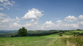 Clouds moving over blue sky and fresh green landscape in countryside time lapse stock footage