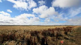 Clouds moving over patagonia plains stock video footage