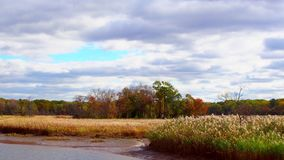 Clouds Moving Over River and Fall Trees. Fall River clouds stock footage
