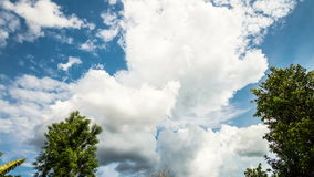 Clouds moving over the trees stock footage