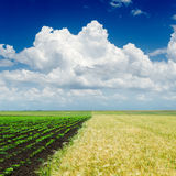 Clouds over agriculture fields Stock Image