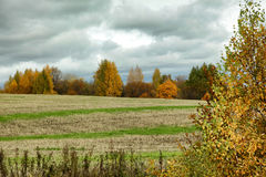 Clouds over autumn trees and striped field.  Stock Photo