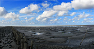 Clouds over beach at low tide. Scenic view of blue sky and cloudscape over dark beach at low tide with wooden breakwater Royalty Free Stock Photo