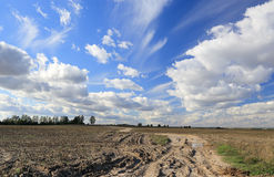 Clouds over a dirt road in a field Royalty Free Stock Photos