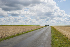 Clouds over Farmland near Royan with cyclist. Stock Image