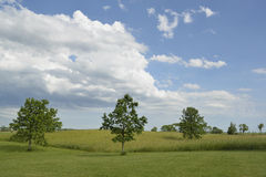 Clouds over field. Stock Photography