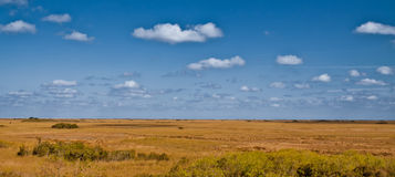 Clouds over field, Everglades, Florida Royalty Free Stock Image