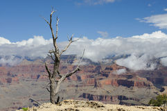 Clouds over the Grand Canyon. Arizona Royalty Free Stock Photos