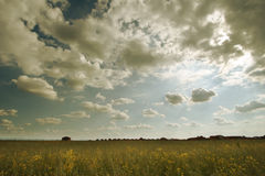 Clouds over the green field. Royalty Free Stock Photography