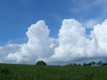 Clouds over the meadow Royalty Free Stock Photography