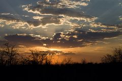 Clouds over pounding at sunset, Botswana Royalty Free Stock Image