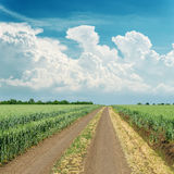 Clouds over road in green field Royalty Free Stock Images