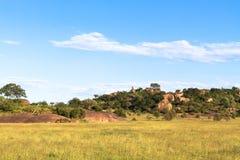 Clouds over savannah. Yellow field. Serengeti, Tanzania Stock Photography