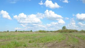 Clouds over the spring green meadow. Spring landscape stock footage