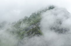 Clouds over the taiga in siberia Stock Photos