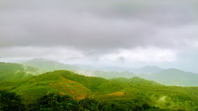 Clouds over tea plantation stock video footage