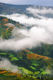 Clouds over Tibetan landscape. Aerial view of low level cloud over Tibetan countryside Stock Images
