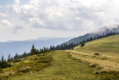 Clouds over top of a mountain with green pine forest and grass m. Eadow Royalty Free Stock Images