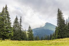 Clouds over top of a mountain with green pine forest and grass m. Eadow Stock Photos