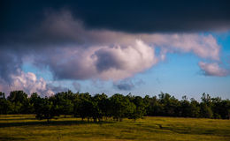 Clouds over trees in Big Meadows in Shenandoah National Park, VA Royalty Free Stock Images