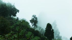 Green hillside with trees in cloud scraps.Mist rushing over mountain ridge.Panning Shot. Clouds pass over mountains.Moving fog over trees. Mist rushing over stock footage