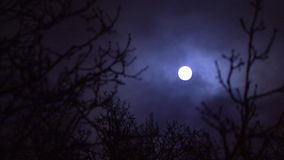 Clouds passing full moon stock video