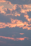 Clouds of Pink. As the sun sinks, clouds are backlight and washed in pink light Royalty Free Stock Photography
