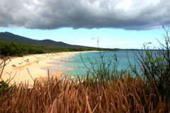 Clouds and plants. At makena big beach stock photo
