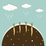 Clouds poured rain the ground with a carrot vector background Stock Image