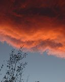 clouds red Royaltyfria Bilder