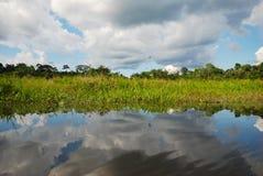 Sky reflecting in river, Amazonia, Ecuador Stock Photos